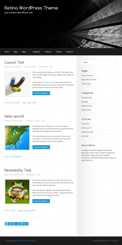 Retina Free WordPress Theme