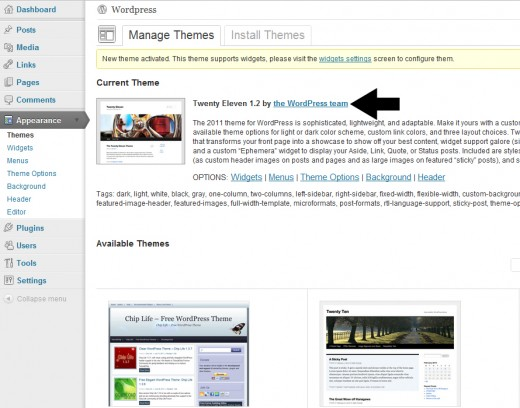 Learn how to Install WP Theme in WordPress