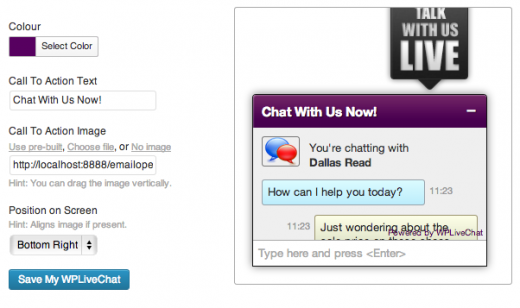 Lively Chat Support