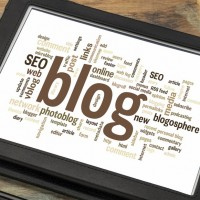 SEO and Blogging Experience