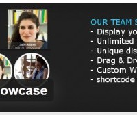 Our-Team-Showcase-500x168