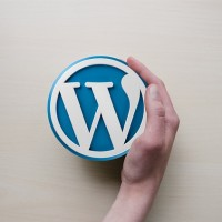 Superpowers All Successful WordPress Developers MUST Have